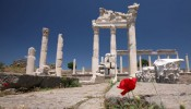 Pergamon - Around Ephesus City (6/8)