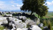 Priene - Around Ephesus City (10/20)