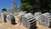 Priene - Around Ephesus City (14/20)