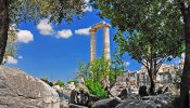 Didyma - Temple of Apollo - Around Ephesus City (3/16)