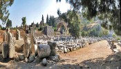 Theatre Gymnasium at Ephesus (8/8)