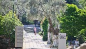The House of Virgin Mary - Around Ephesus City (19/20)