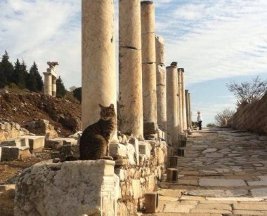 Marble Street in Ephesus City