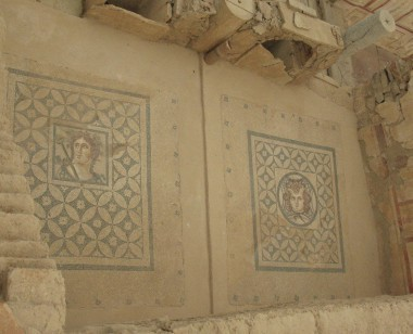 Dionysus and Medusa Mosaics - Terrace Houses